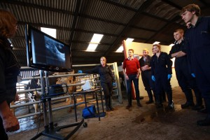 David Russell joins agriculture students looking at screen images of pregnancy testing in cattle