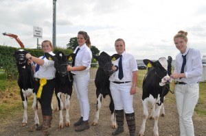 2Agriculture students Rebecca Harper, Kirsty Tailor, Liberty Turner and Lydia Diamond show youngstock from Reaseheath Holsteins