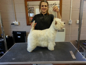 Lois and THAT West Highland Terrier from the Cesar adverts!