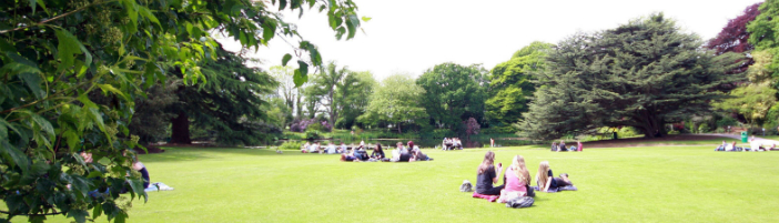 Students relax on the main lawn