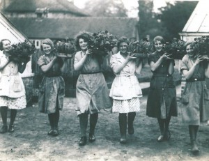 Women's Land Army Girls in the Horticulture Department at Reaseheath