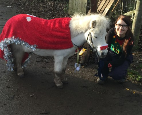 Nicole Hatcher with miniature Shetland pony 'Frankie'