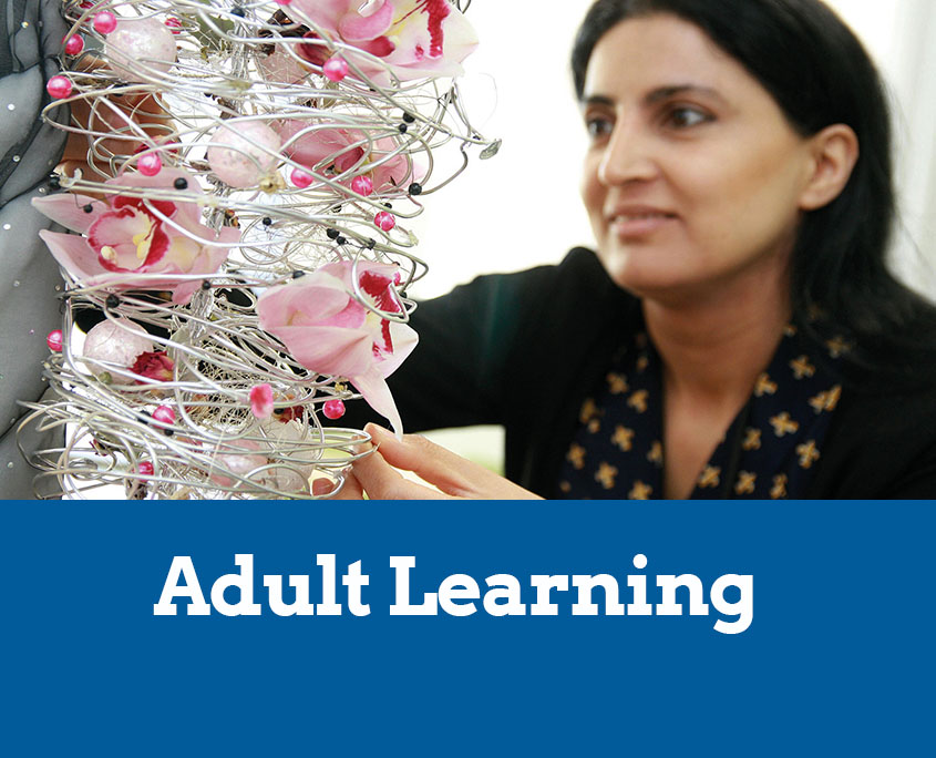 content uploads adult learning article