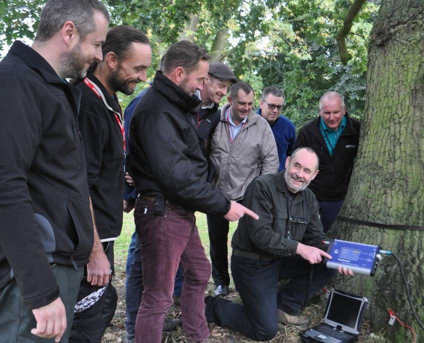 John Harraway uses sonic tomography to assess tree health, watched by industry professionals